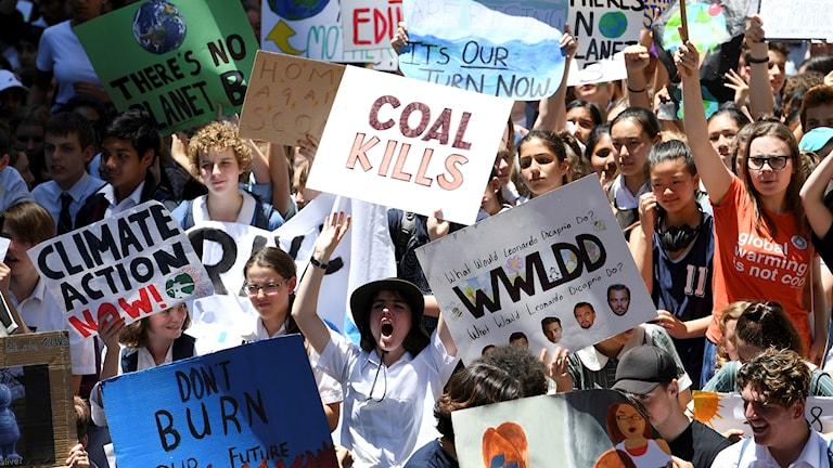 Klimatprotester Australien