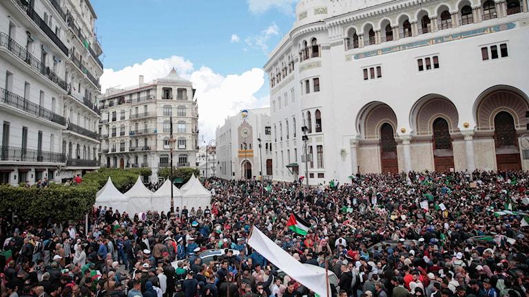 Protester i Algeriet under onsdagen.