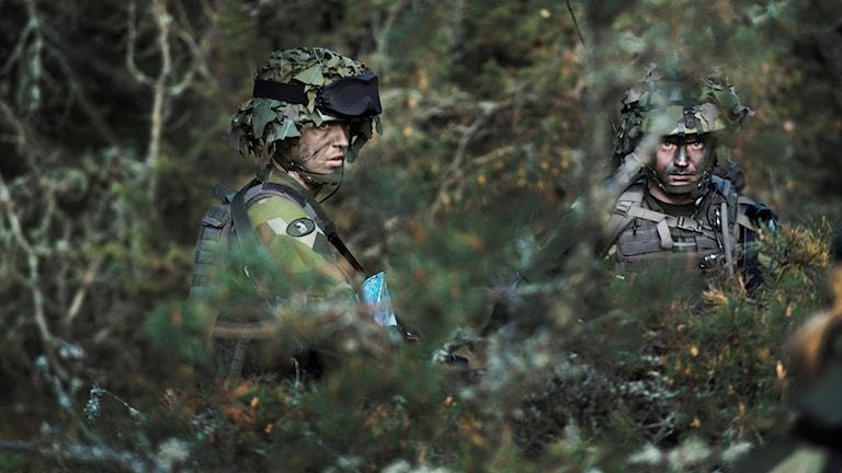 Försvarsmakten, militär, soldat