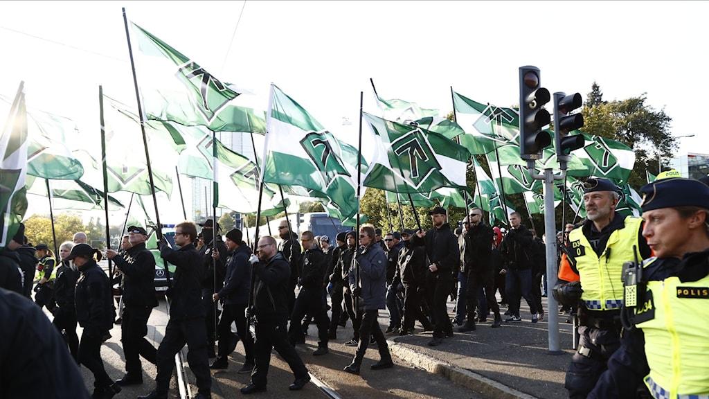 NMR-Demonstranter i Göteborg 2017