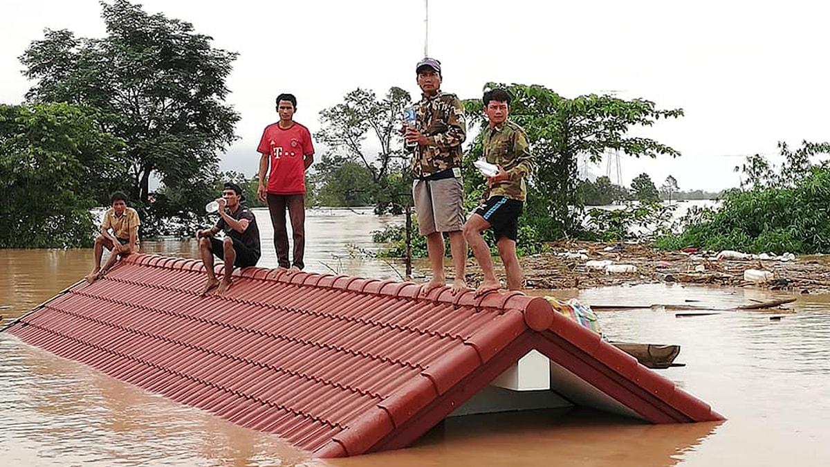 Fem personer på ett tak med vatten runt
