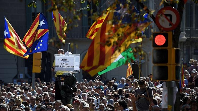 Folkmassa med flaggor. Foto: Lluis Gene/TT.