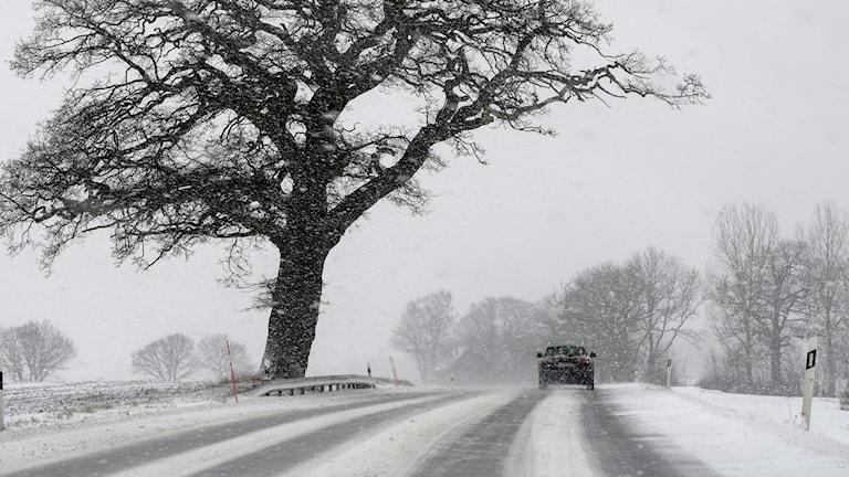 Snö, väder, halka, bil, trafik