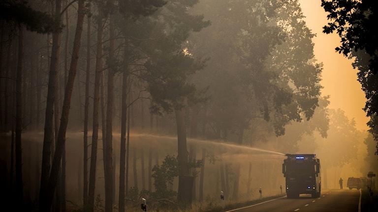 Arkivbild, skogsbränder i Tyskland.