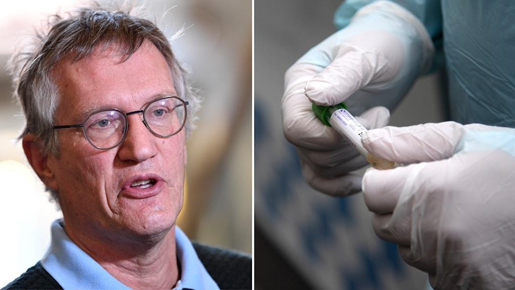 Bildsplit på statsepidemolog Anders Tegnell på Folkhälsomyndigheten och provrör i händer med handskar på.