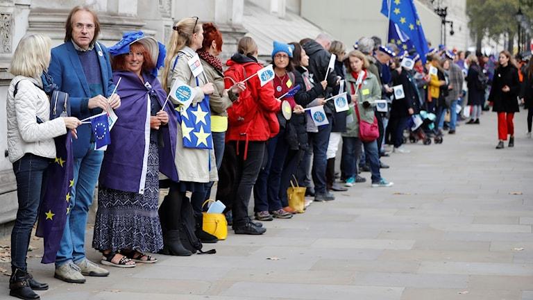 Demonstrerar mot brexit i London, människor bildar kedja.