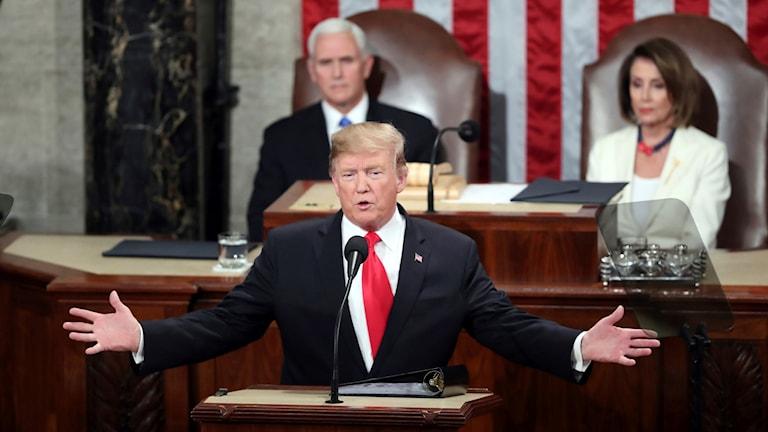 Donald Trump, State of the Union. Foto: Andrew Harnik/TT.