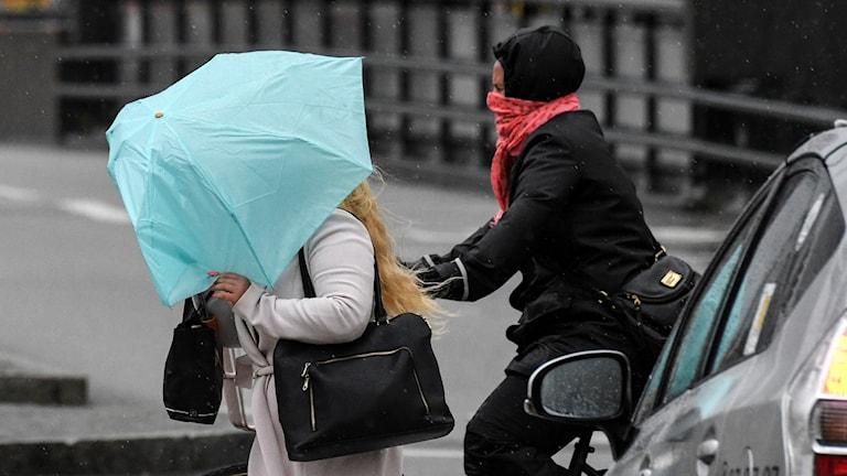 Storm, paraply regn.