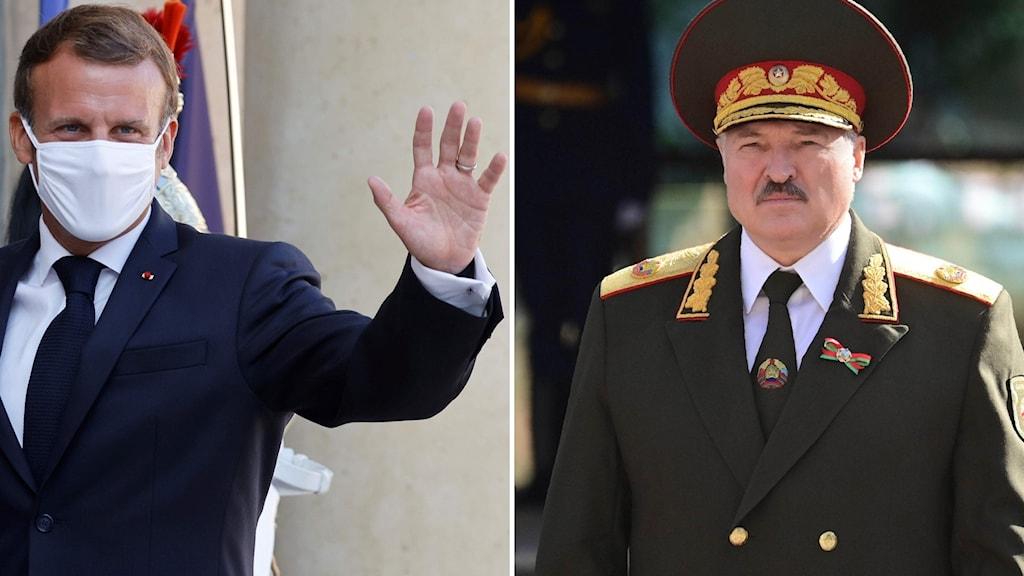 Montage med franske presidenten Macron och belarus ledare Lukasjenko