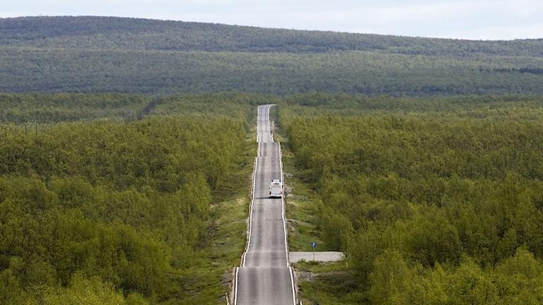 En väg i närheten av Kuttainen, 23 mil norr om polcirkeln. Foto: Krister Larsson/TT.