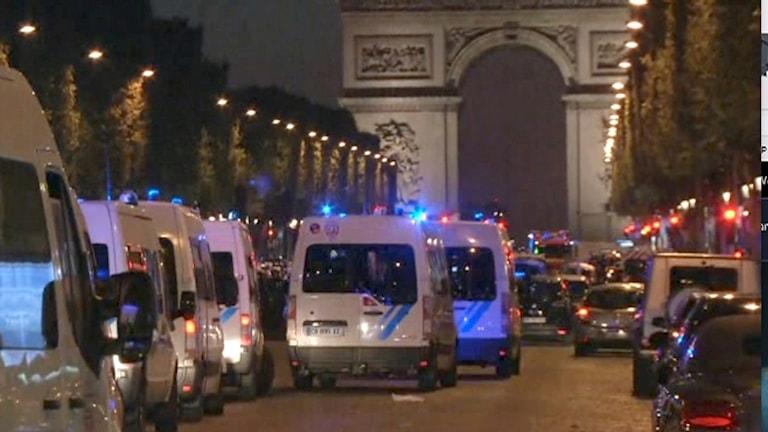Polisbilar på paradgata.