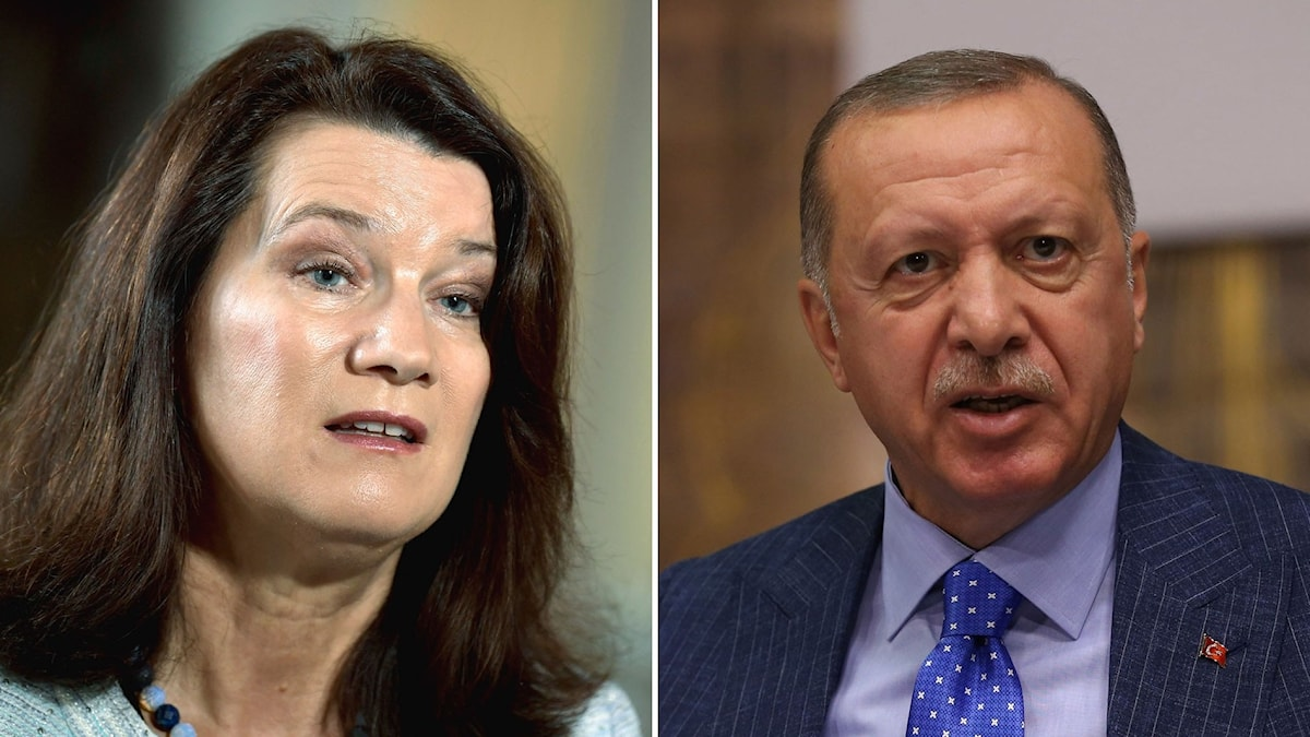 Utrikesminister Ann Linde och Turkiets president Recep Tayyip Erdogan.