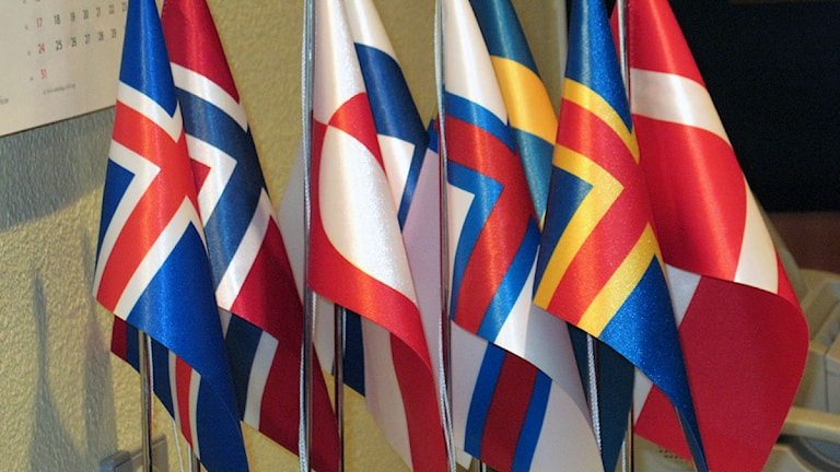 De nordiska flaggorna. Foto: Christer Fridén/Sveriges Radio