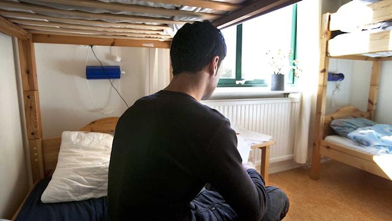 Flyktingförläggning i Hököpinge, Skåne. Foto: Stig-Åke Jönsson/Scanpix
