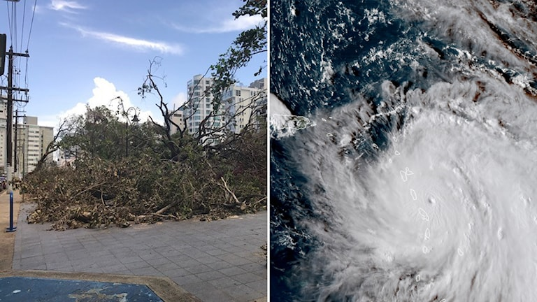 Efter orkanen: Miljoner människor är utan ström i Puerto Rico