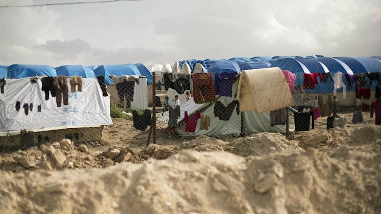 Fånglägret i Al-Hol i nordöstra Syrien