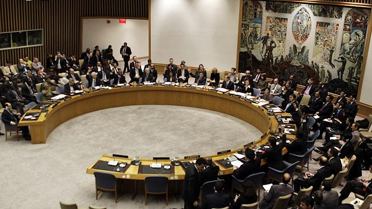 De 15 medlemmarna i FN:s säkerhetsråd röstar för att införa sanktioner mot Libyen. Foto: Mary Altaffer/Scanpix.