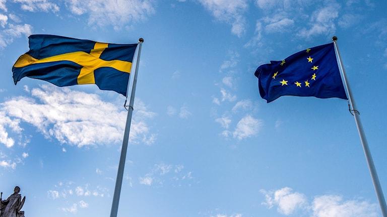 Svensk flagga och EU-flagga