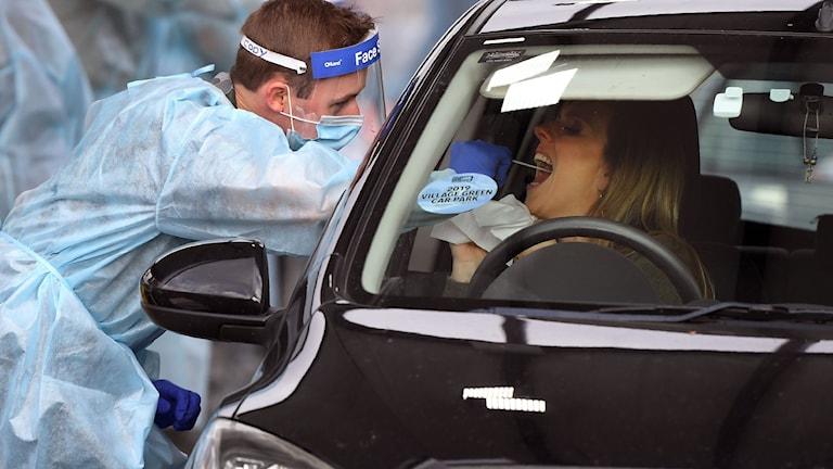 En försvarsanställd utför ett covid-test på en person i en bil.