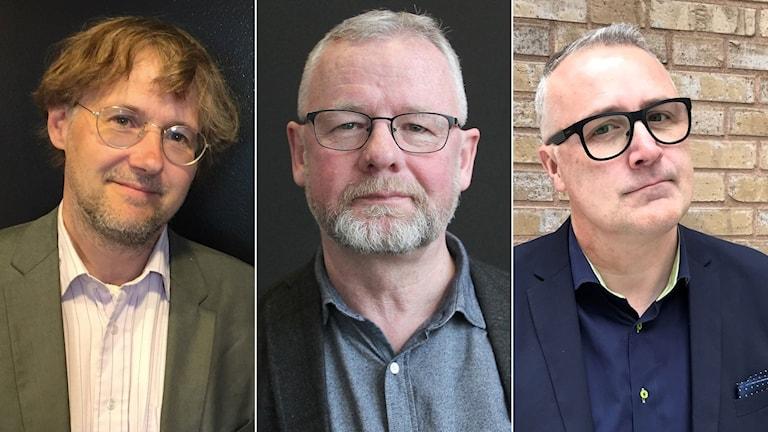 Niclas Malmberg från Uppsala, Per-Inge Lidén från Karlstad  och Magnus P Wåhlin från Växjö vill alla efterträda Gustav Fridolin.