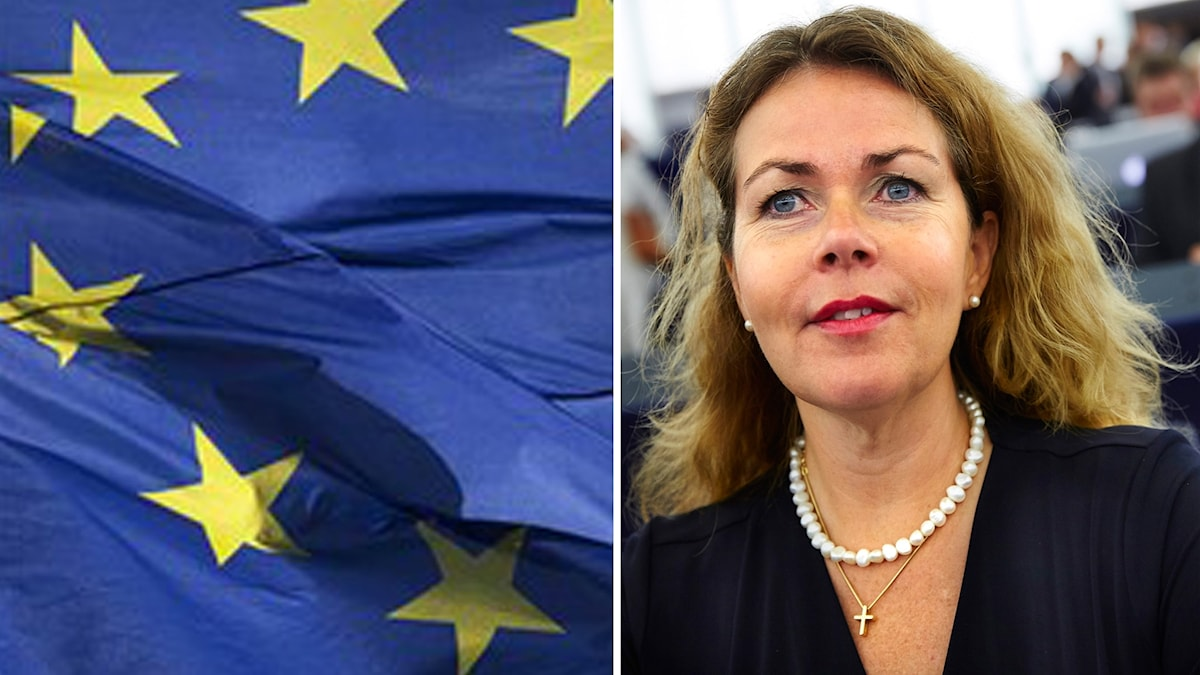 Cecilia Wikström och EU-flaggan. Foto: Markus Schreiber/Fredrik Persson/TT.