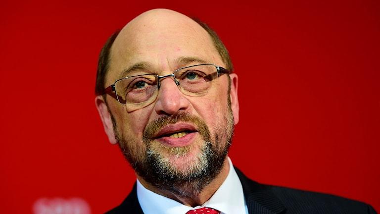 Martin Schultz, Partiledare SPD