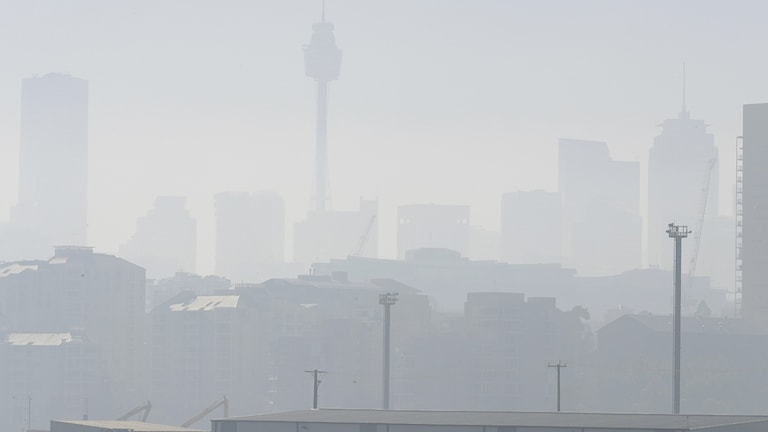 Rök täcker Sydney