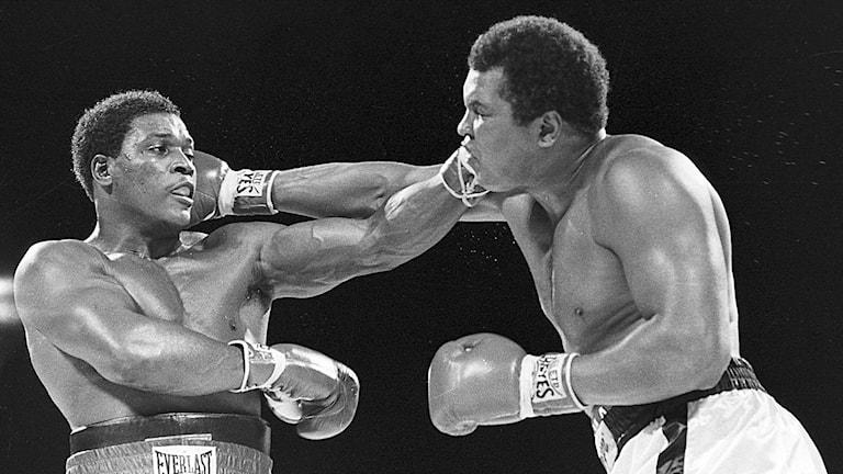 Mohammad Ali i en match mot Trevor Berbick (till vänster) 1981.