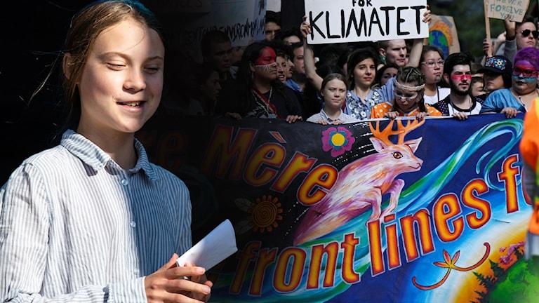 Thunberg: Vuxnas världsbild är hotad av oss