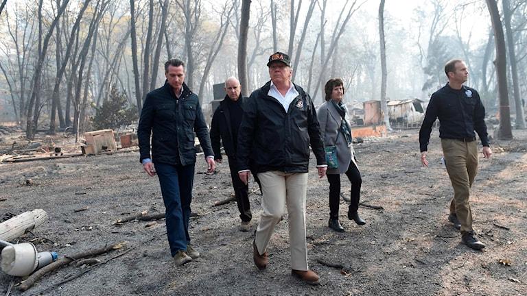 USA:s president Donald Trump går igenom den utbrända staden Paradise.