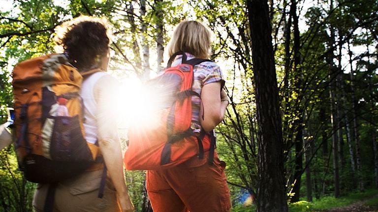 Två kvinnor på vandring i skogen.