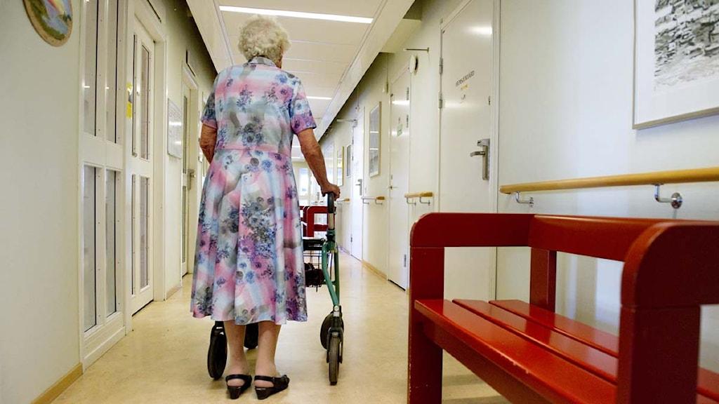 En äldre kvinna går i en korridor på ett äldreboende. Foto: Jessica Gow/Scanpix