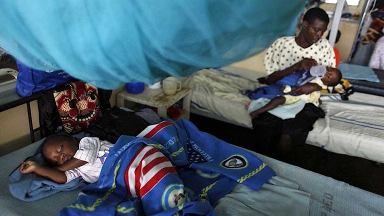 Barn som smittats av malaria ligger på ett sjukhus i västra Kenya. Foto: Karel Prinsloo/Scanpix.