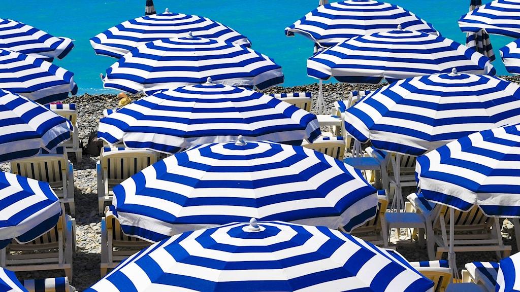parasoller