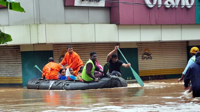 Årets monsunregn har orsakat stor förödelse i den indiska delstaten Kerala.