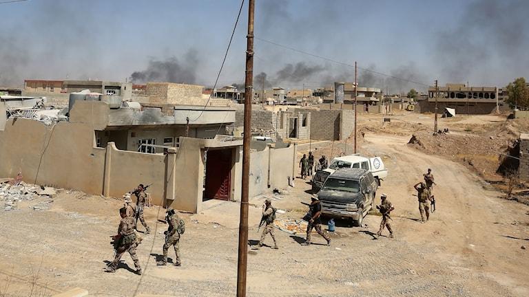 Soldater från Hashed Al-Shaabi i al-Nour, östra delarna av Tal Afar.