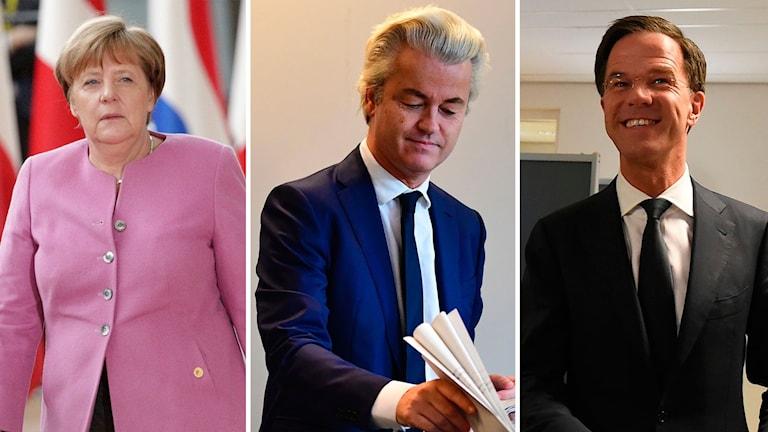 Angela Merkel, Geert Wilders och Mark Rutte