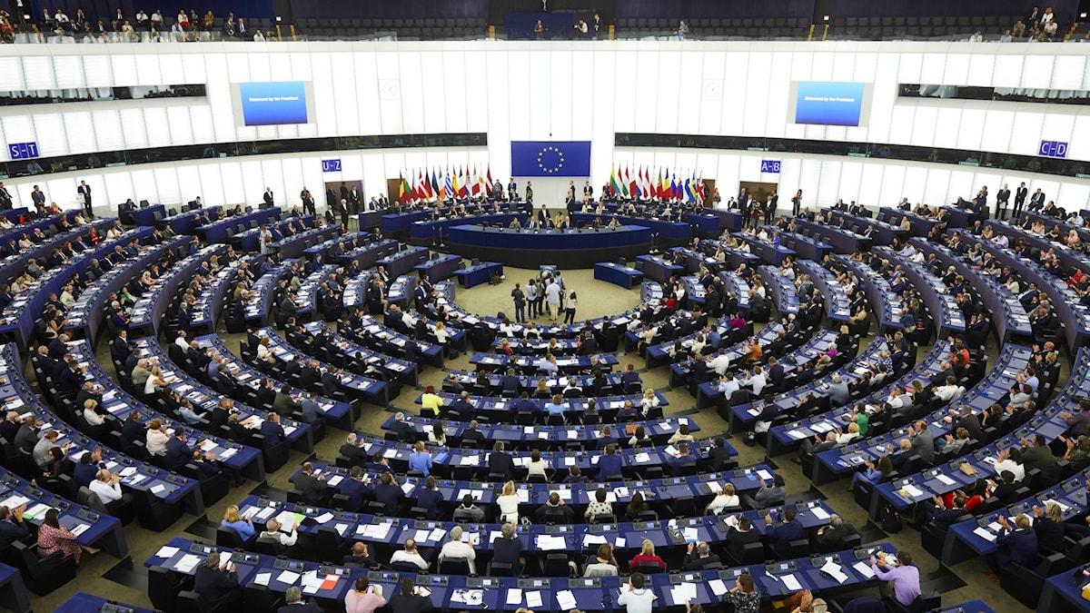 Eu-parlamentets plenisal