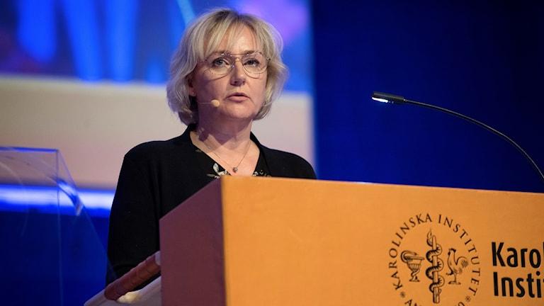 Helene Hellmark-Knutsson