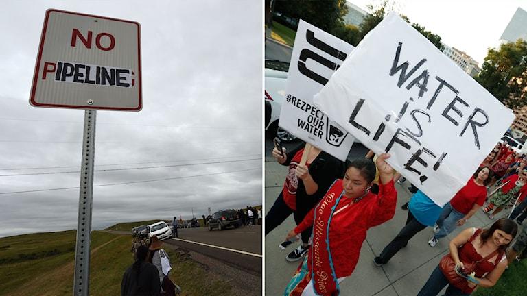 Delad bild: Modifierad vägskylt där det står No pipeline och demonstranter som håller en skylt med texten water is life, vatten är liv.