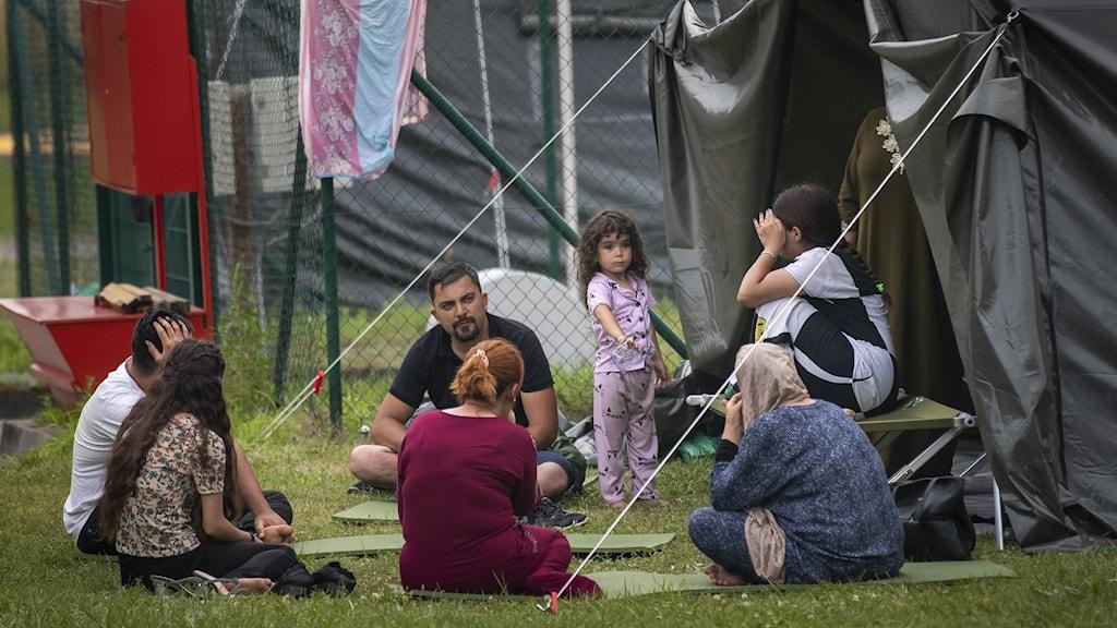 Irakiska migranter i Litauen