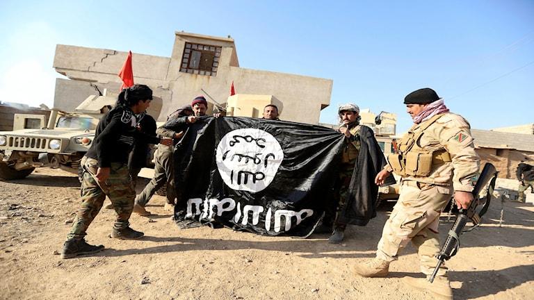 Irakisk armé håller upp en IS-flagga som de kommit över i en militäroperation för att få kontrollen över en by utanför Mosul, 29 november 2016.