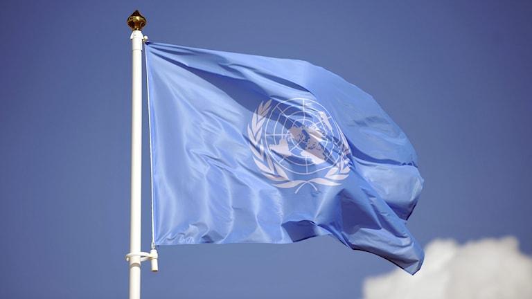 Fn:s blå flagga mot blå  himmel.