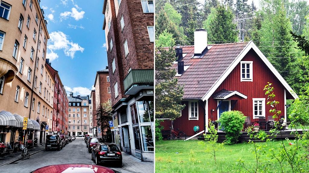 Storstadsborna köper för att investera, landsortsborna köper för att bo.