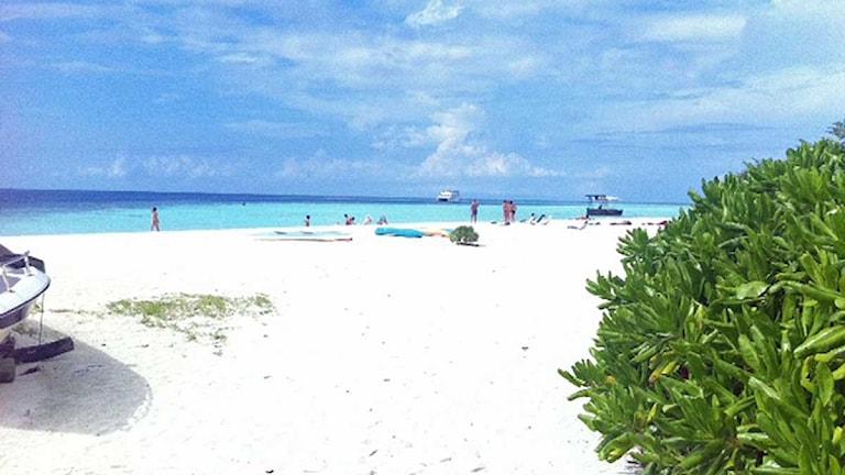 En strand på Maldiverna. Foto: Margita Boström/Sveriges Radio.