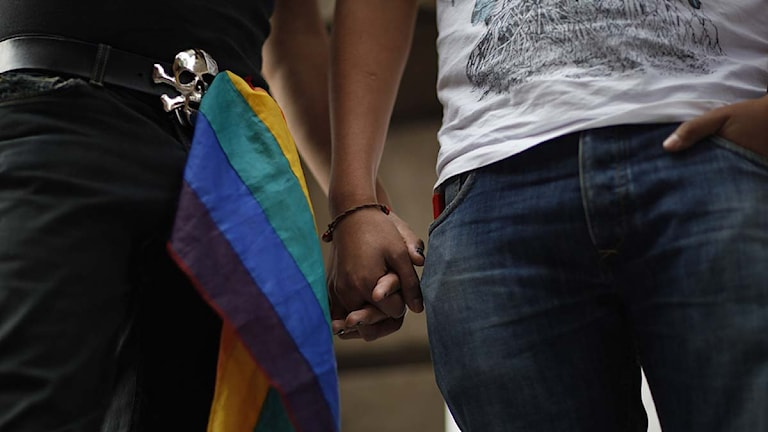 Homosexuellt herrpar håller ganden. Foto: Alexandre Meneghini/Scanpix