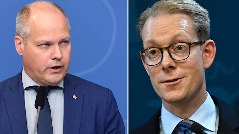 Morgan Johansson och Tobias Billström