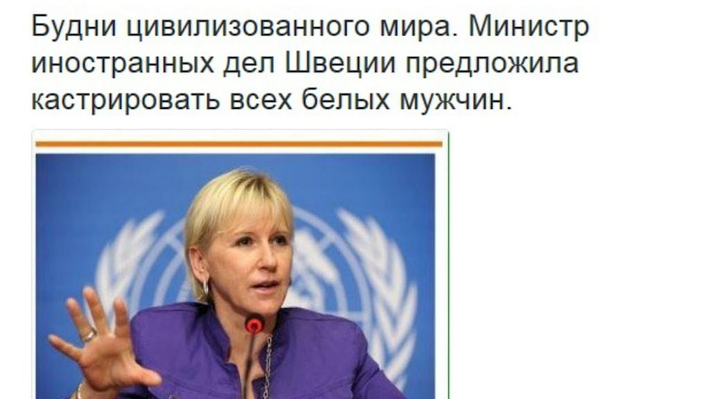 Margot Wallström utsatt för rysk nätkampanj.