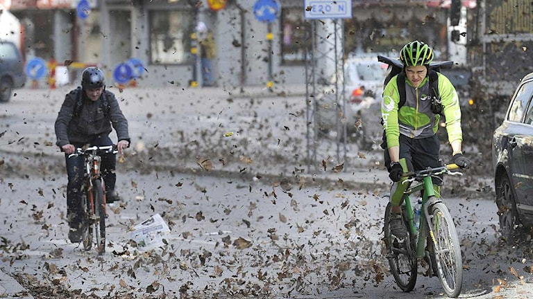 Fahrradfahrer Schweden (Foto: Leif R. Jansson/TT)