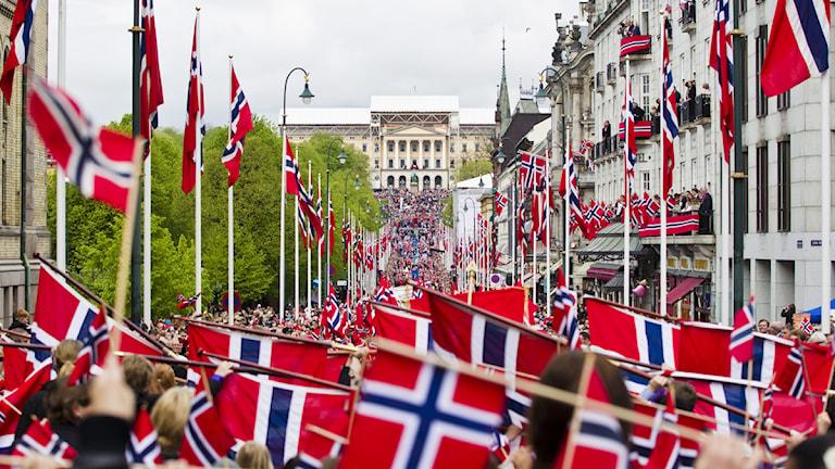 Norska flaggor i tusental framför slottet i Oslo. Foto: Vegard Grøtt/Scanpix.